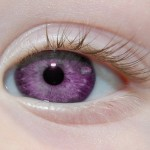 фиолетовые глаза/4406465_fioletovieglaza1150x150 (150x150, 6Kb)