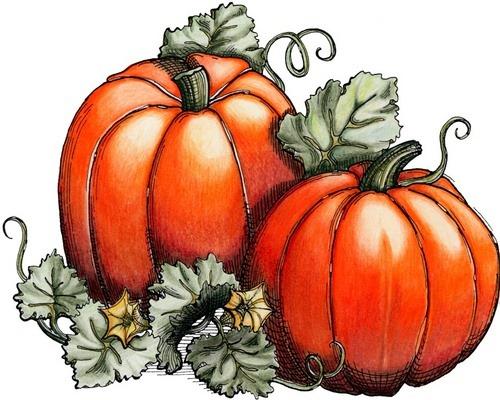 Pumpkins[3] (500x400, 238Kb)