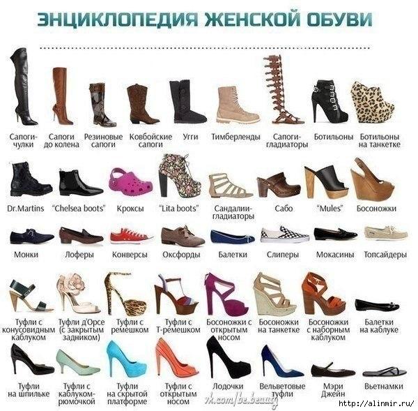 1375289912_yenciklopediya_zhenskoy_obuvi (600x589, 197Kb)