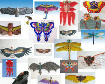Как сделать картонного/тканевого/пластикового или шелкового свободной формы воздушного змея своими руками/2565092_333444 (350x280, 47Kb)