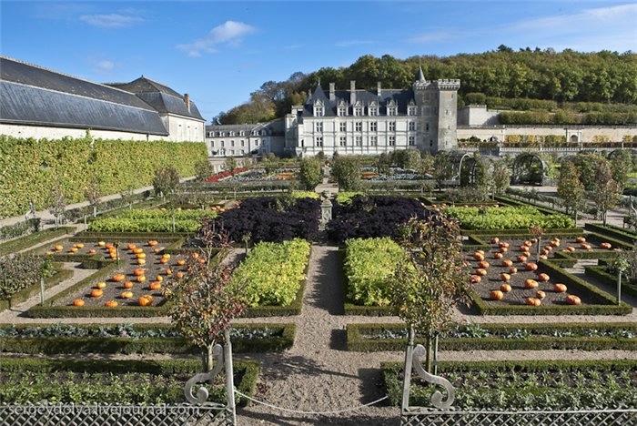 Сады замка Вилландри 1 (700x468, 284Kb)