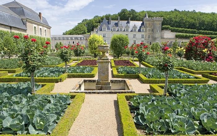 Сады замка Вилландри 9 (700x437, 316Kb)