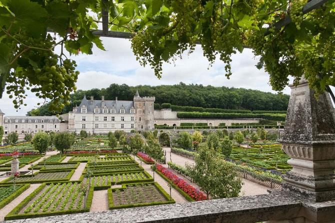 Сады замка Вилландри 13 (670x447, 263Kb)