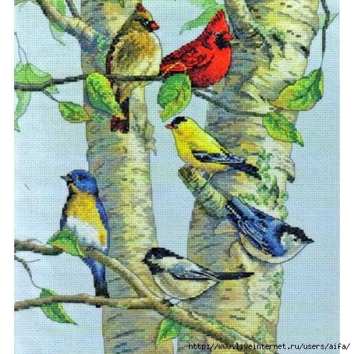 Вышивка крестом, схемы Птицы