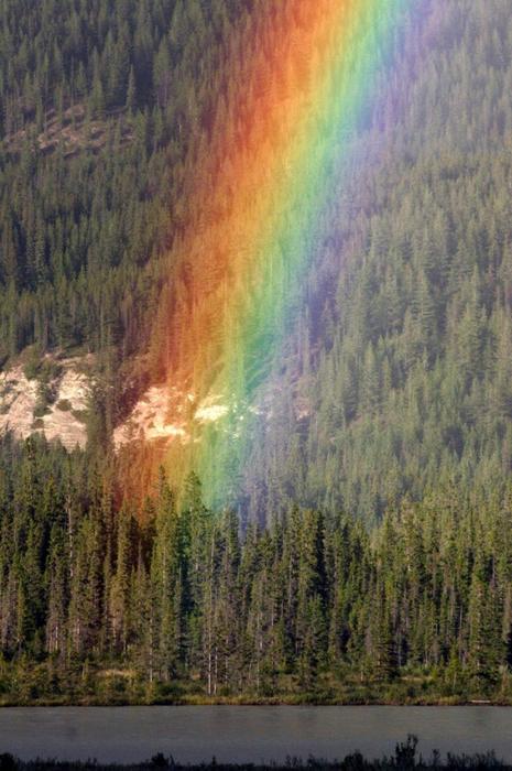 радуга фото 15 (465x700, 403Kb)