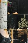 Превью ommtaobook-taobook8om-0068 (468x700, 268Kb)