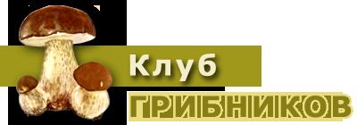 griby (400x140, 42Kb)