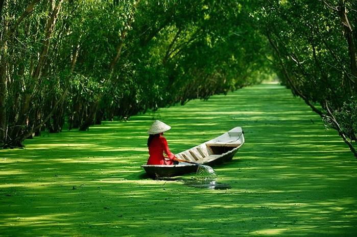 Жизнь и достопримечательности Вьетнама