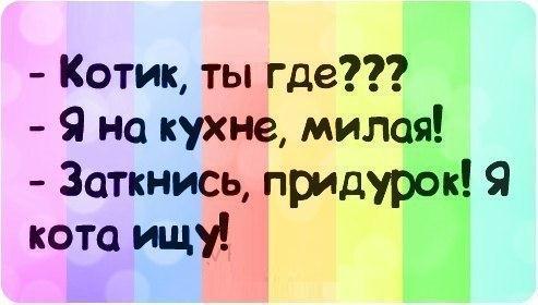 smeshnie_kartinki_1375502163030820131551 (493x280, 25Kb)