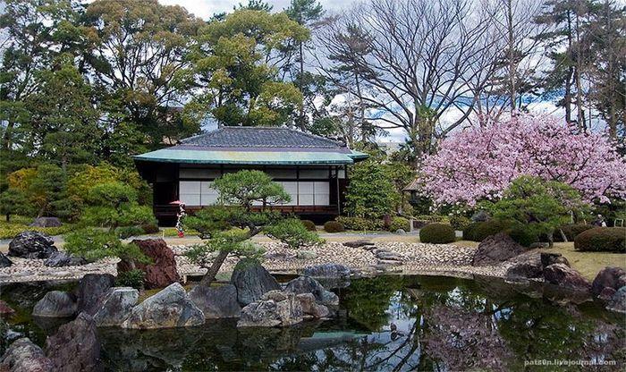 Японский замок Нидзё фото 2 (700x416, 422Kb)