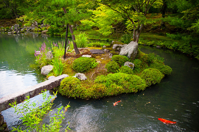 Японский замок Нидзё фото 9 (670x445, 672Kb)