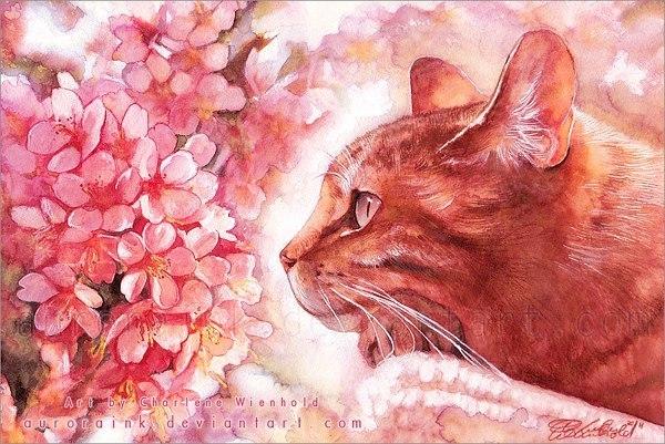 Aurora Wienhold - милые портреты кошек
