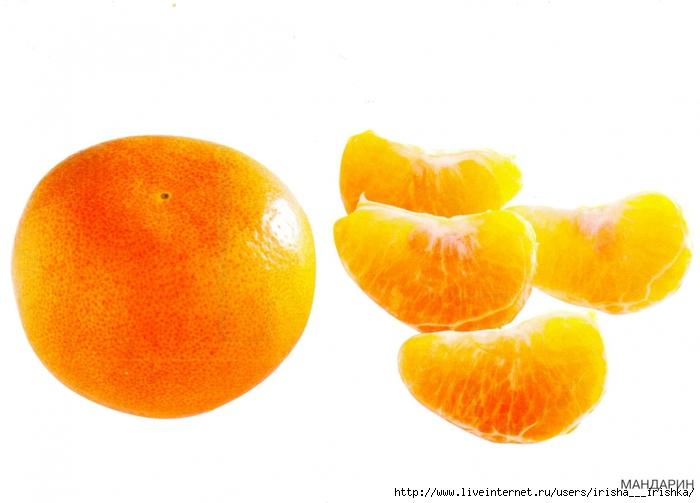 4979214_mandarin (700x503, 186Kb)