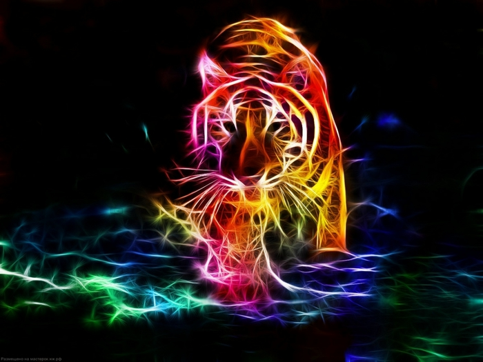 электрические картины животных 15 (700x525, 195Kb)