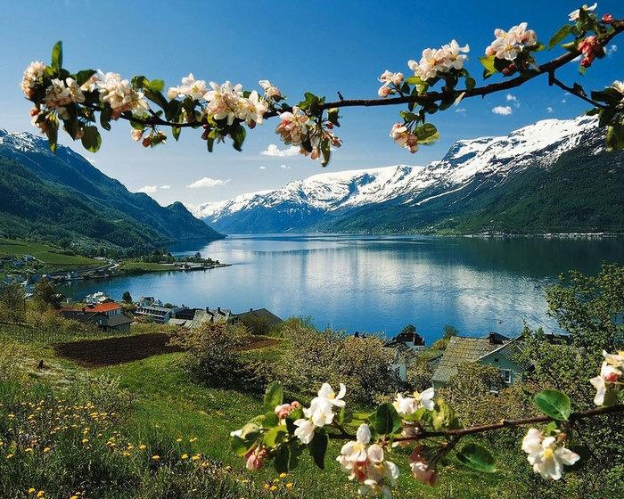 3578968_Hardangerfjord (700x560, 173Kb)
