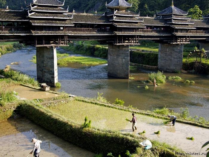 3925073_chengyangbridge5 (700x525, 370Kb)
