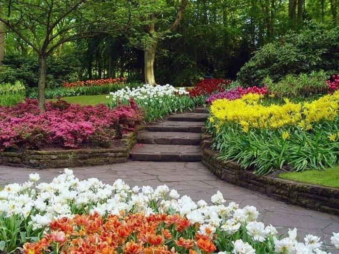цветочный парк Кейкенхоф голландия 3 (700x525, 305Kb)