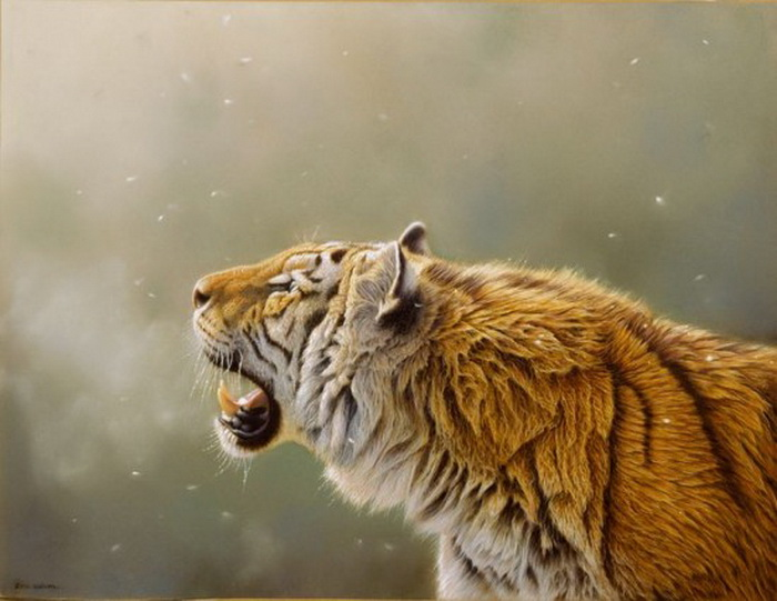 Eric-Wilson-wildlife-2 (700x541, 102Kb)