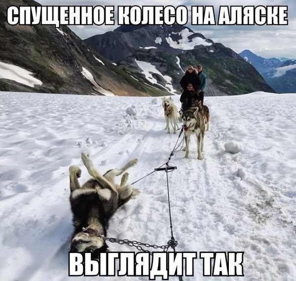 1375824857_podborka_49_1 (604x573, 160Kb)