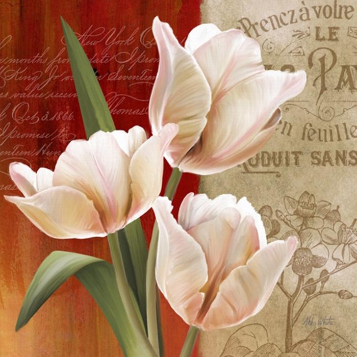 French Tulips II-72 (700x700, 295Kb)