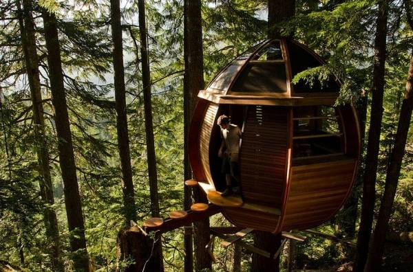 amazing-treehouses-13-600x396 (600x396, 237Kb)