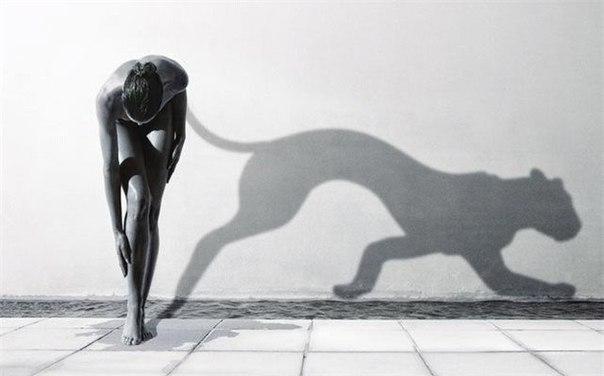 женщина как кошка (604x376, 29Kb)