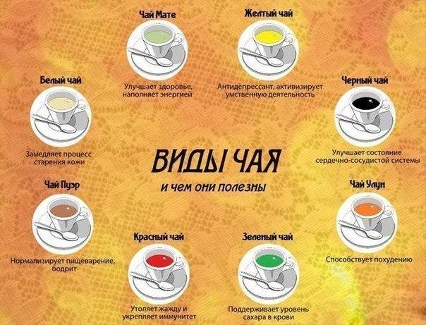 чай (604x461, 281Kb)