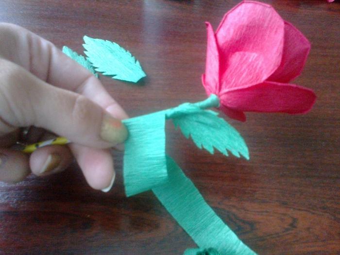 Цветы из гофрированной бумаги. Несколько мастер-классов (36) (700x525, 280Kb)