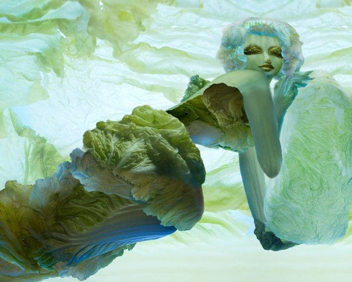 овощные картины Ю Дуоки 6 (700x560, 287Kb)