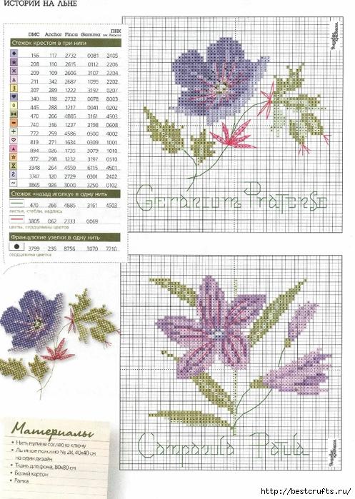 Вышиваю крестиком. Журнал со схемами (30) (497x700, 312Kb)