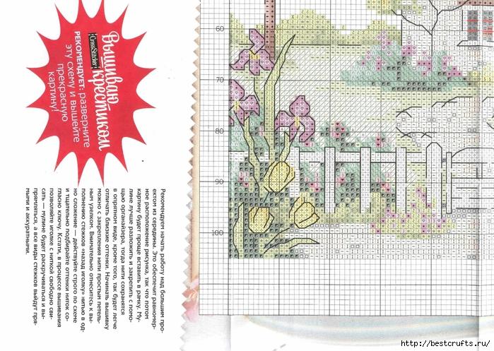 Вышиваю крестиком. Журнал со схемами (57) (700x497, 334Kb)