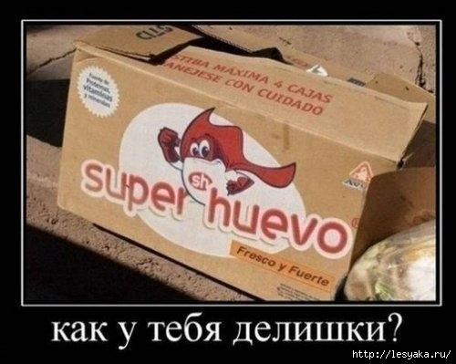 102559119_large_1372745947_novyedemki18 (500x399, 98Kb)