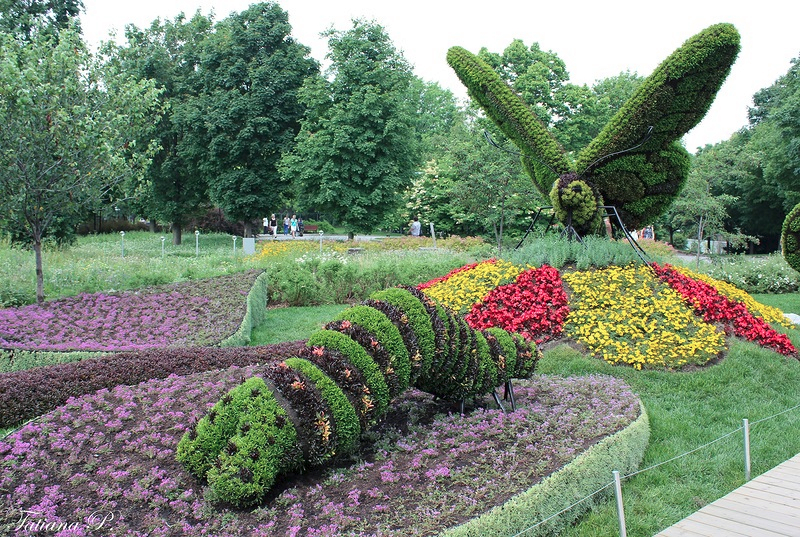 Фото Ботанический сад Монреаля