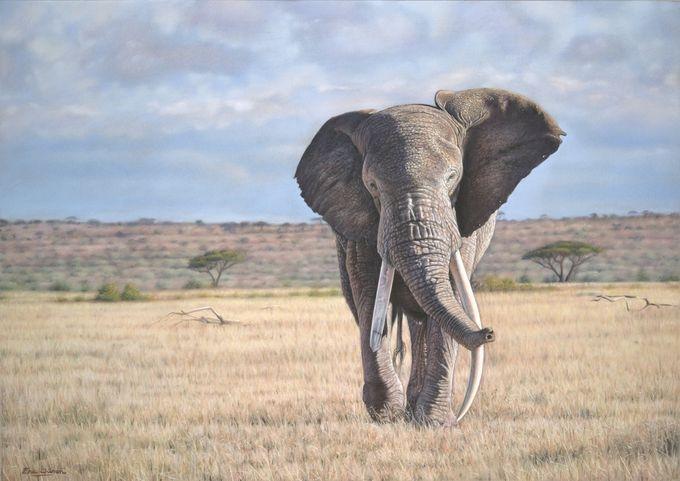 животные в картинах художников Эрик Уилсон (680x481, 156Kb)