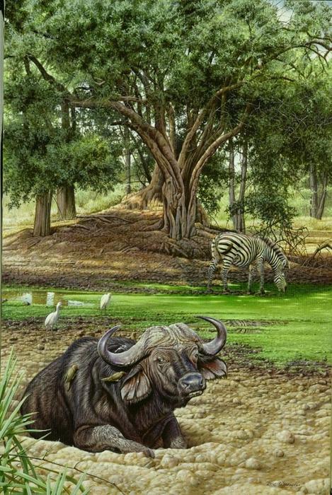 животные в картинах художников Эрик Уилсон 6 (469x700, 327Kb)