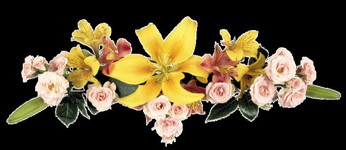 Картинки цветов для оформления открыток 3