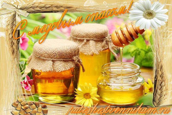 4449415_Medovii_spas (700x466, 231Kb)