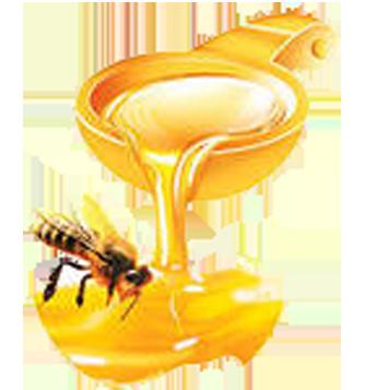 мёд (345x357, 123Kb)