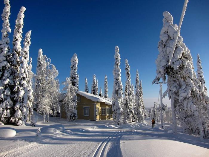 зима-в-Финляндии (700x525, 272Kb)