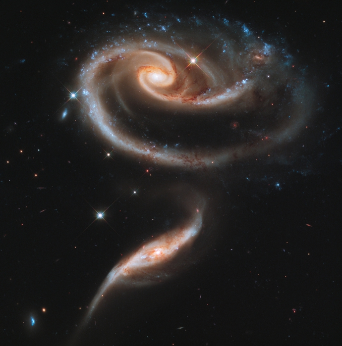 4709286_SpaceRose (690x700, 259Kb)