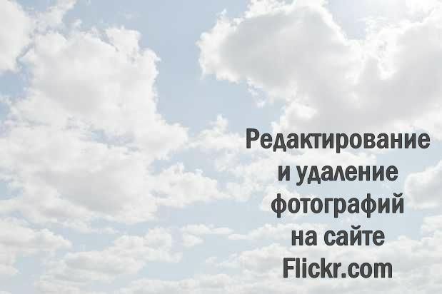 Как загрузить фото на Flickr.com, как добавить эффекты, редактировать, удалить фотографию