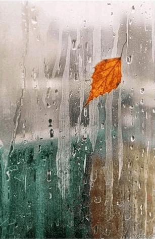 дождь в окне обр (307x474, 177Kb)