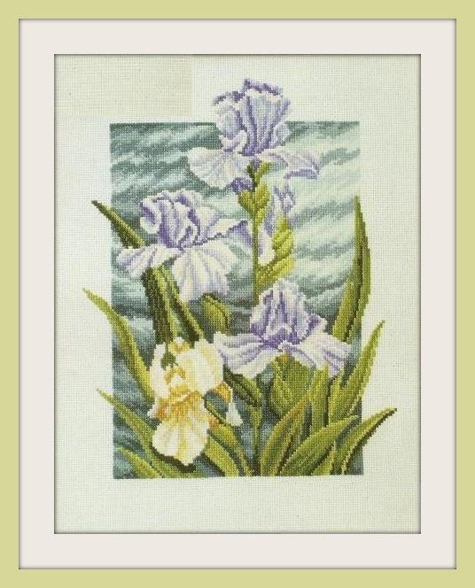 цветы дуо (536x664, 127Kb)