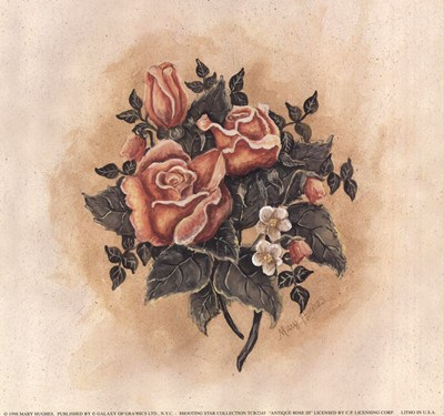 antique-rose-iii-by-mary-hughes-103935 (400x375, 129Kb)