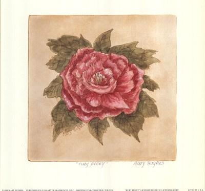 ruby-peony-by-mary-hughes-103940 (400x373, 100Kb)