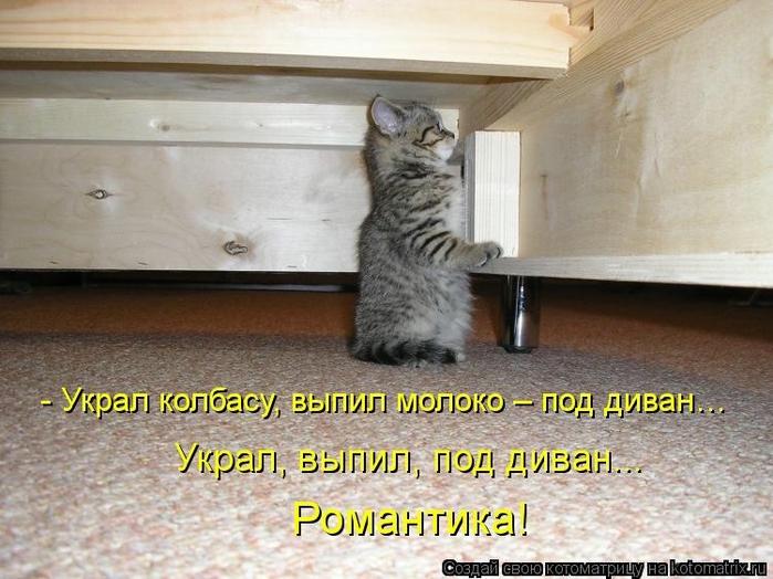 kotomatritsa_Yq (700x524, 262Kb)
