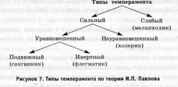 Темперамент. (594x292, 28Kb)