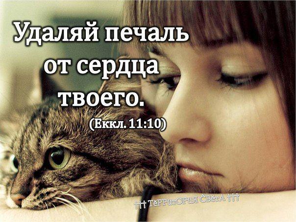 3925311_mydroe_pechal_1_ (604x454, 65Kb)