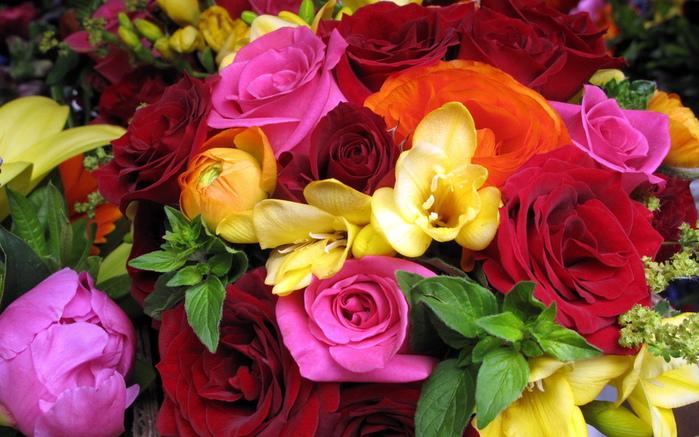 Цветок оранжевый фото 10