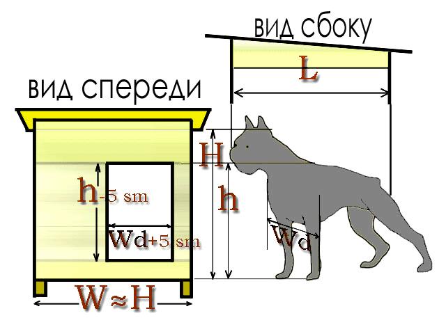 Для проектирования размеров собачьей будки нужно учесть следующее.